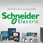 Assistencia Técnica Schneider